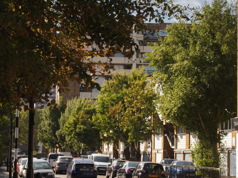 Trees for Streets branches out in Harrow