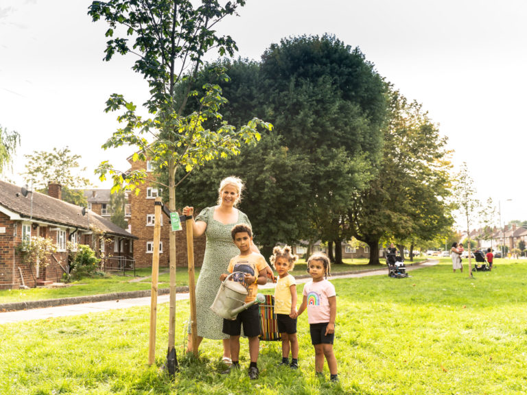 Hot in the City? Trees can help